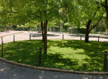 Grünanlage auf dem Schulhof